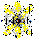 9fluorine