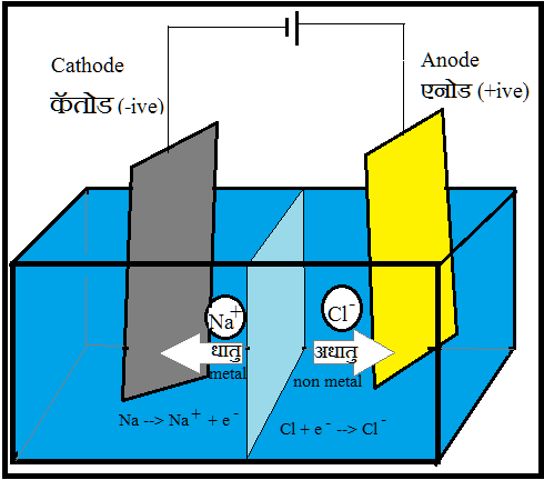 Electrolysis (विद्युतपघटन)
